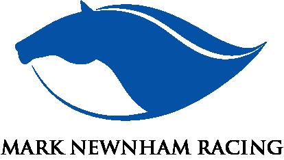 Mark Newnham Racing Logo